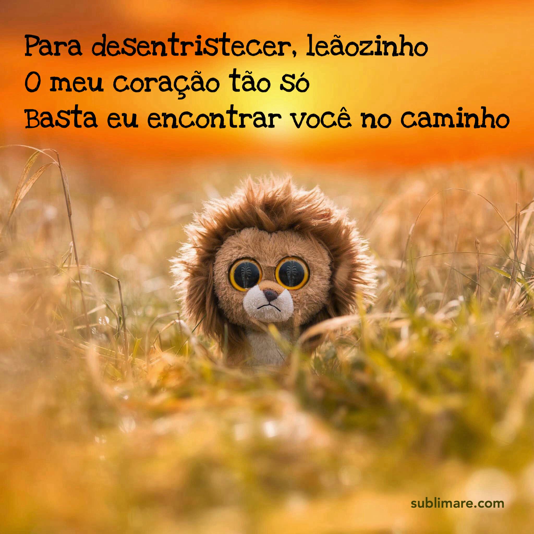 O Leãozinho de Caetano Veloso por Priscilla Ahn